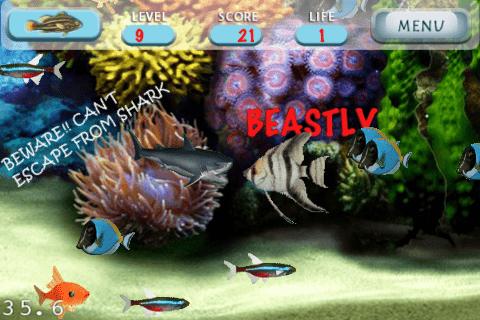 fish-screen-5